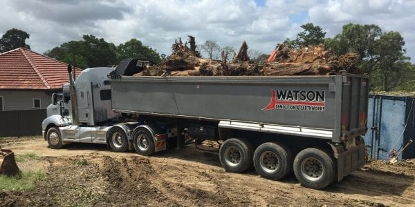 Site Clearing and tree removal service